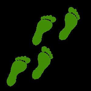 green grassy footprints
