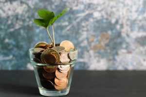glass plant pot full of coins with a small sapling growing out of the top