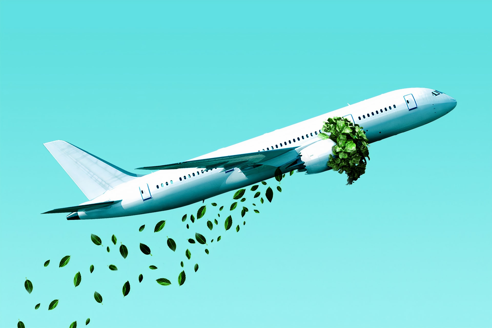photoshopped aeroplane taking off with green leaves going in and out of the engine